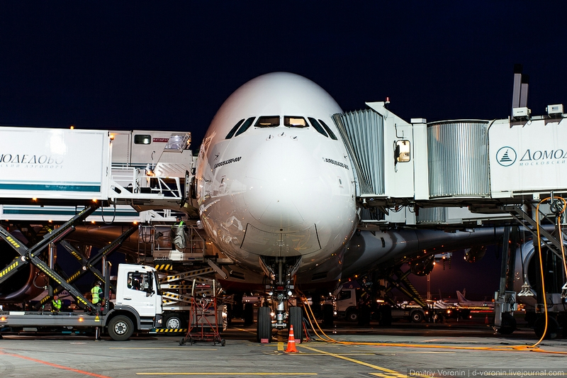 A 380 Airbus In the Moscow Airport