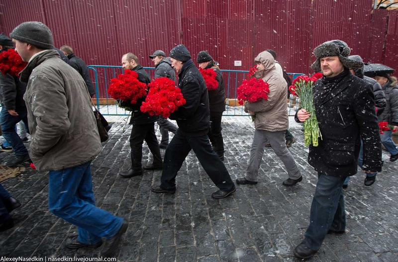 Carnations to Stalin