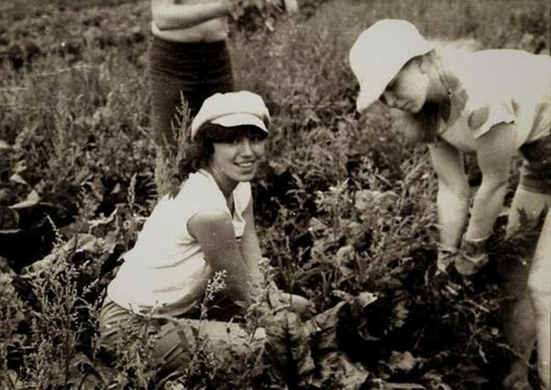 Harvesting In the USSR