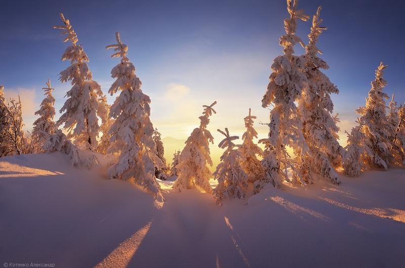 Beauty of The Winter Carpathians
