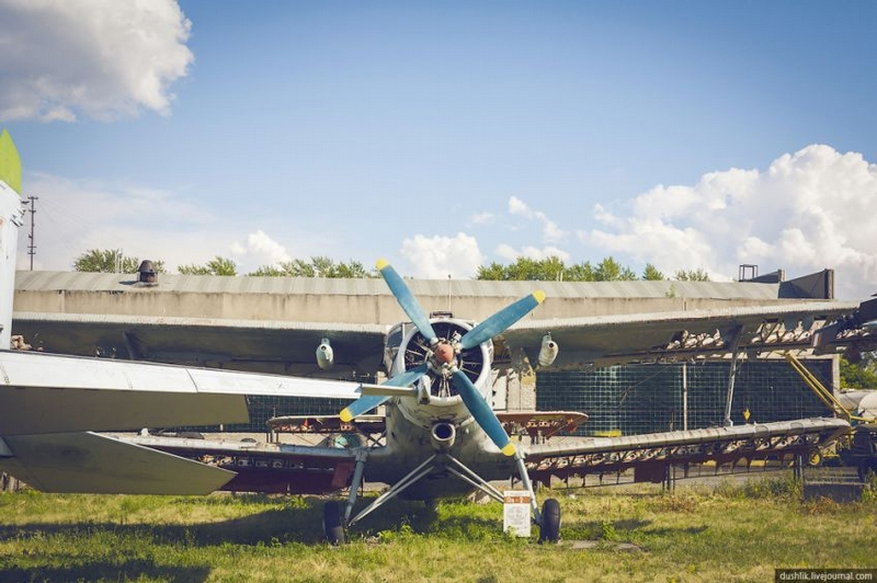 Aviation Museum Under the Open Sky