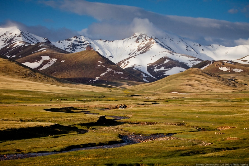 Morning In Kirghizia
