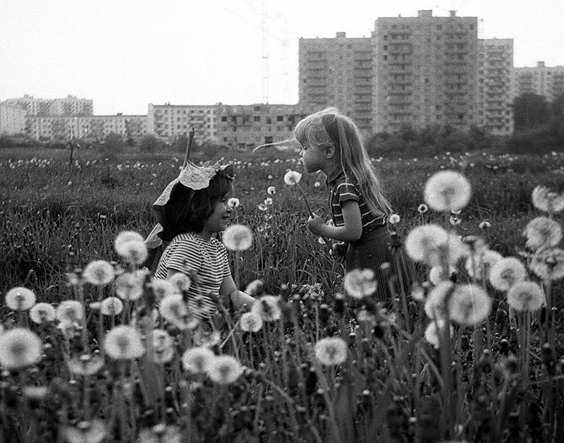 One Hobby For the Two: Charming Photos Of a Loving Married Couple