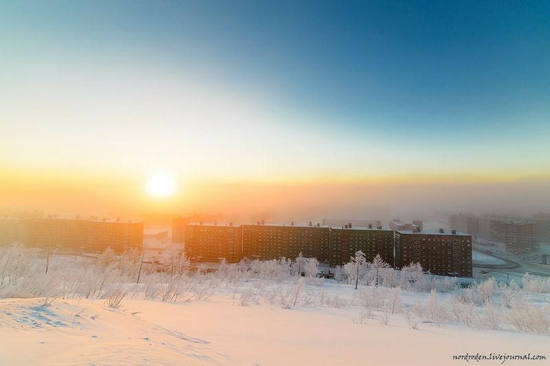 Polar Morning