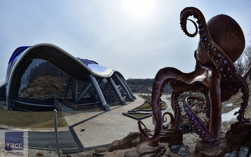New Russian Oceanarium Promises to Be One of the World Best