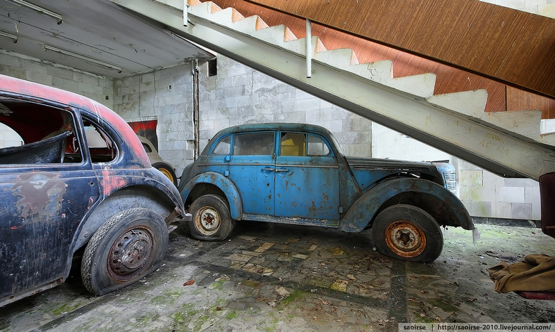 Retro Cars of the Abandoned Summer Camp