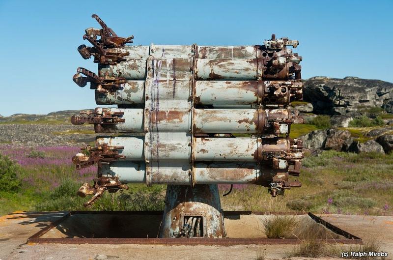 Anti Submarine Camomile
