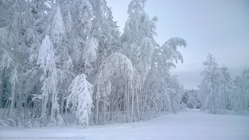 Genuine Beauty of the Russian North