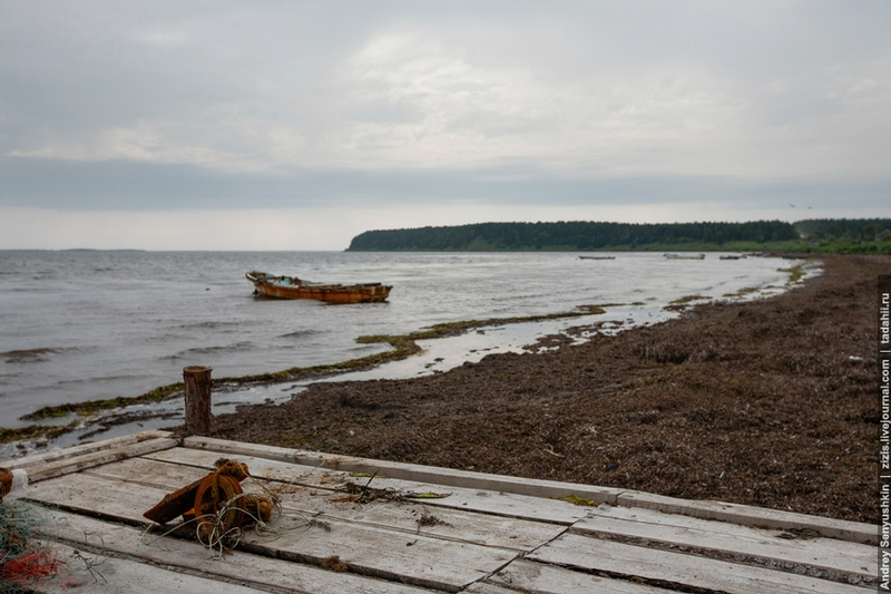 The Fishing Region of Russia