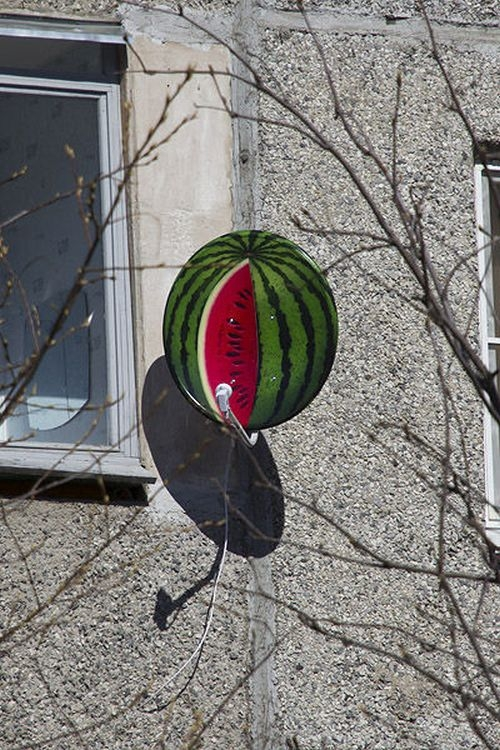 What Can Be Done With An Ordinary Satellite Dish?