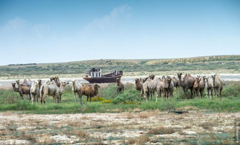 Roadless Kazakhstan