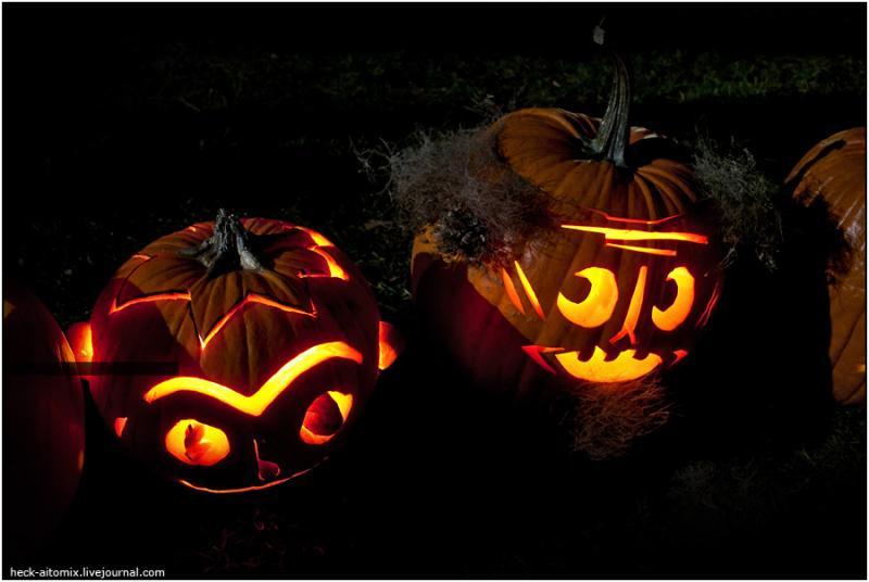 Toronto Pumpkins 10