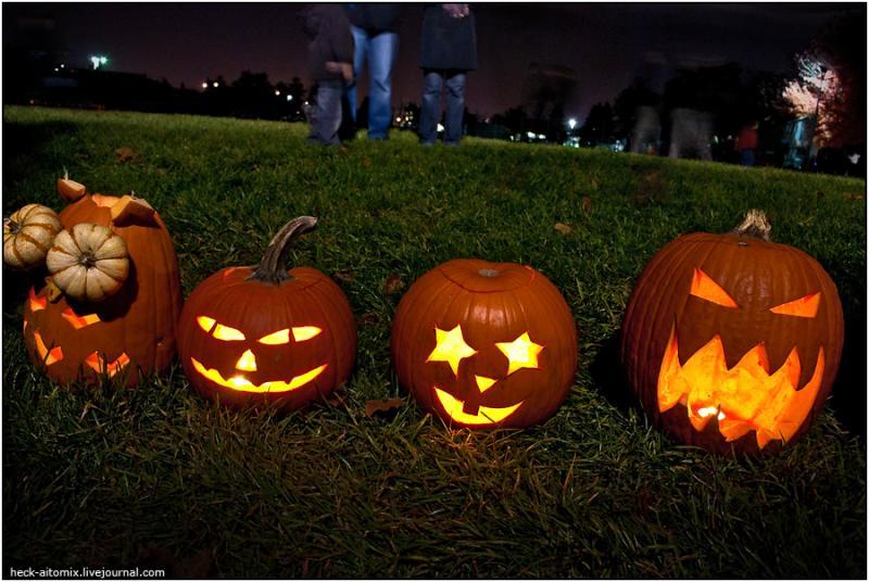 Toronto Pumpkins 5