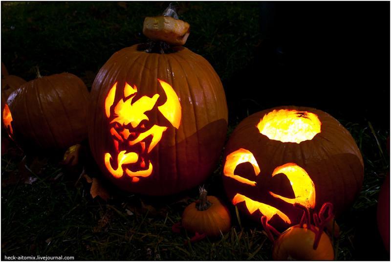Toronto Pumpkins 9