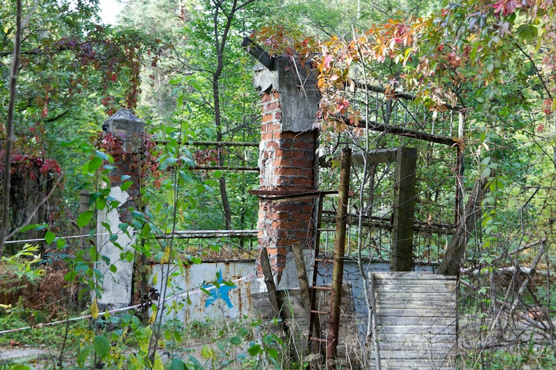 Somewhere In A Byelorussian Wood