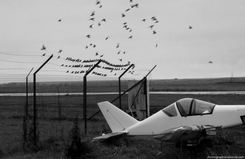 AeroVolga 45