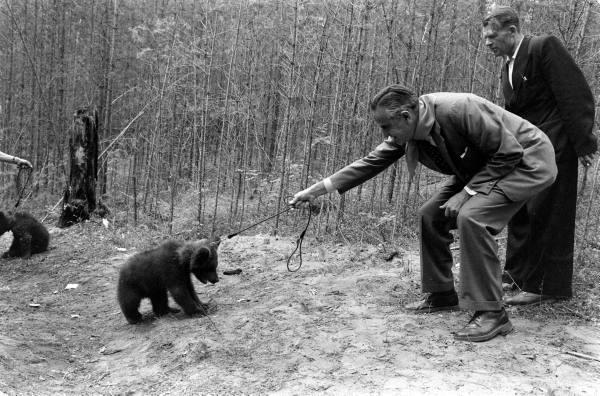 An American In Siberia