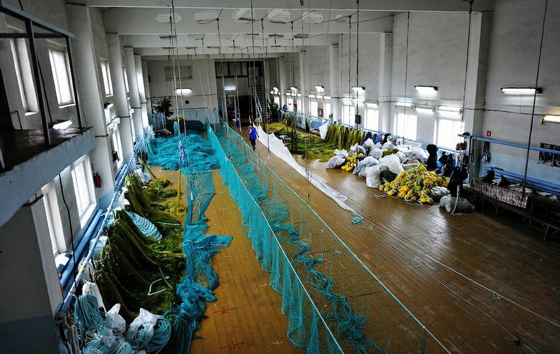 Making Anti-Shark Nets