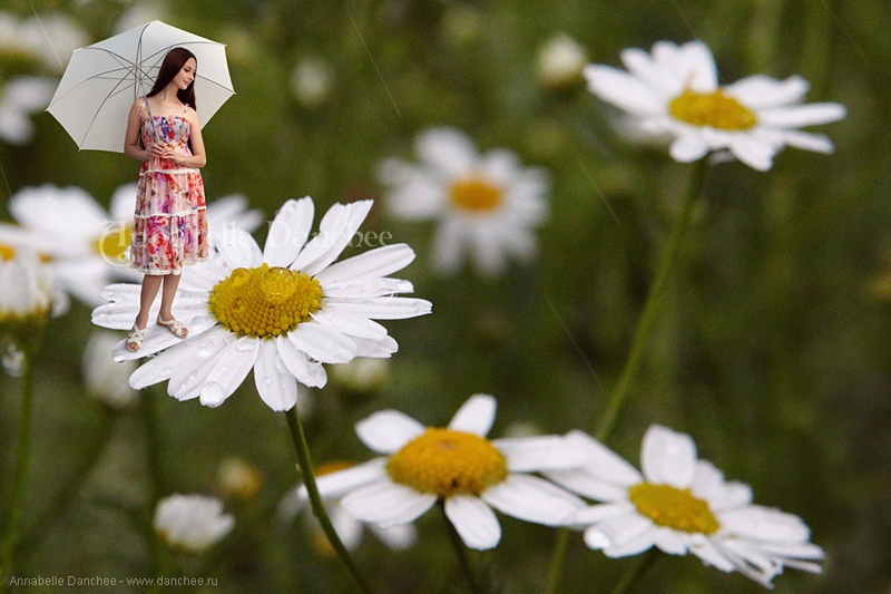 Girl In the Miniture World