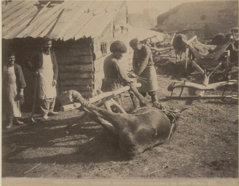 ermakov001 28 Caucasia and Transcaucasia: Ethnic Photos From the XIX Century