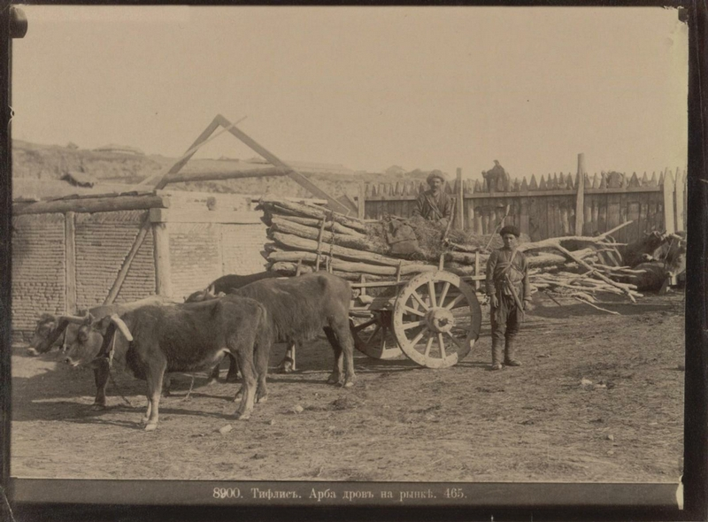 ermakov001 29 Caucasia and Transcaucasia: Ethnic Photos From the XIX Century