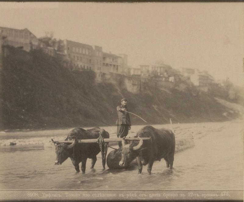 ermakov001 43 Caucasia and Transcaucasia: Ethnic Photos From the XIX Century