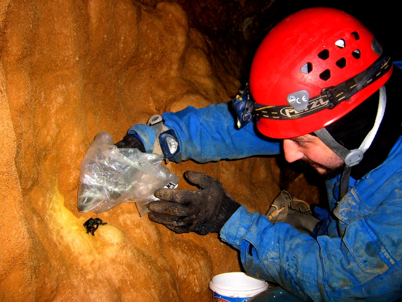 Exploring Virgin Underground Caves