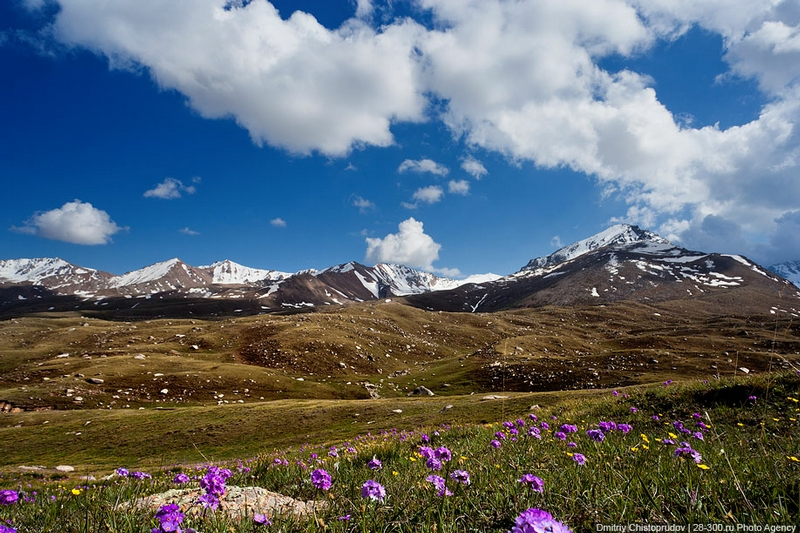 Pure Kirghiz Land And Its Nomads
