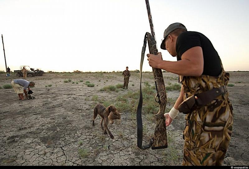 Hunting Some Phesants For Dinner