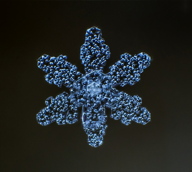 Snowflakes Magnified Hundredfold