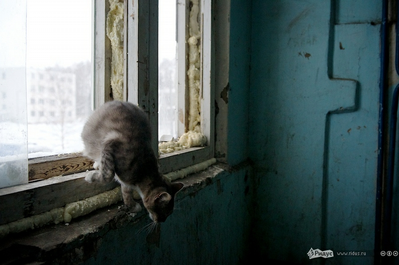 People From Noginsk-2 Offered to Move to Slums