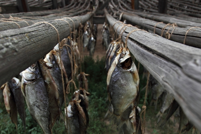 Old Fishery In the Astrakhan Region
