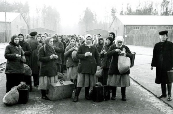 Ostarbeiters: Guest Workers of the War Time
