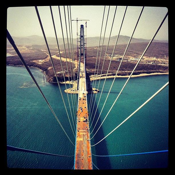 Feeling Giddy On the Bridge