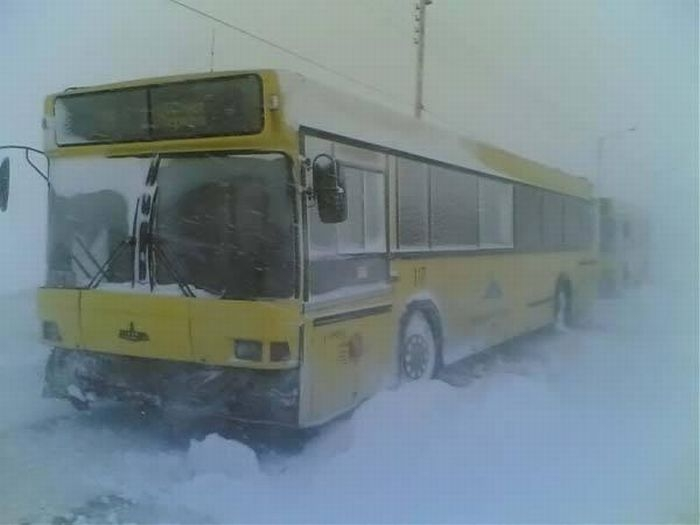 News From Russian Roads, Part 51