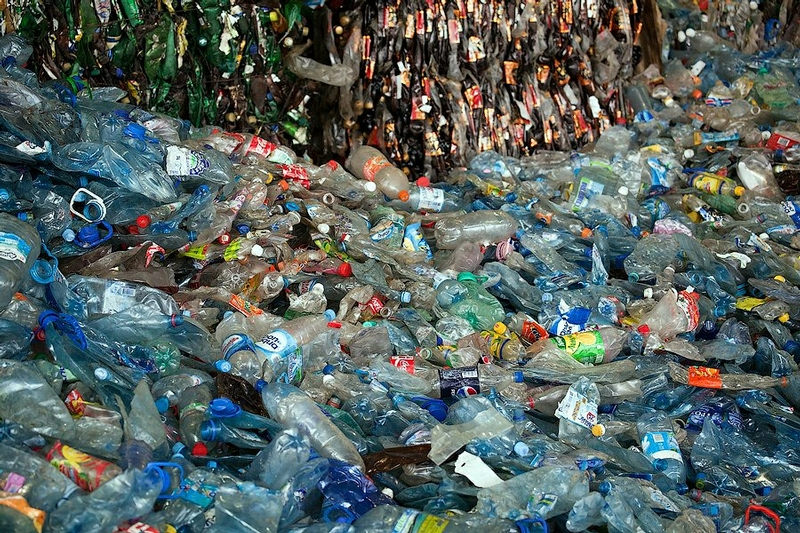 Second Life Of A Plastic Bottle