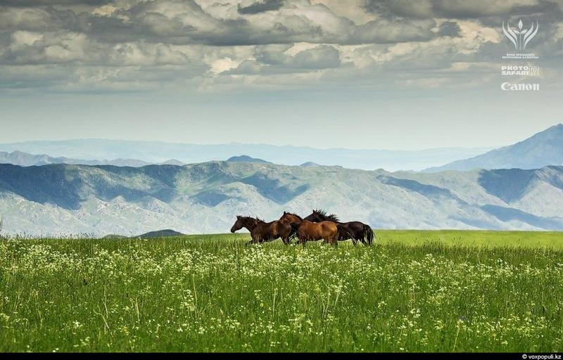 Unknown Kazakhstan