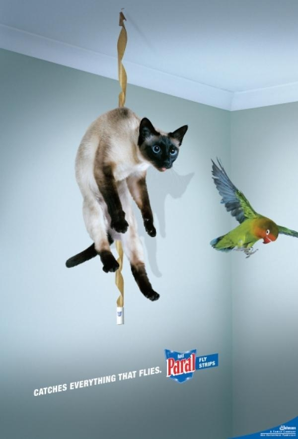 Ads With Cats