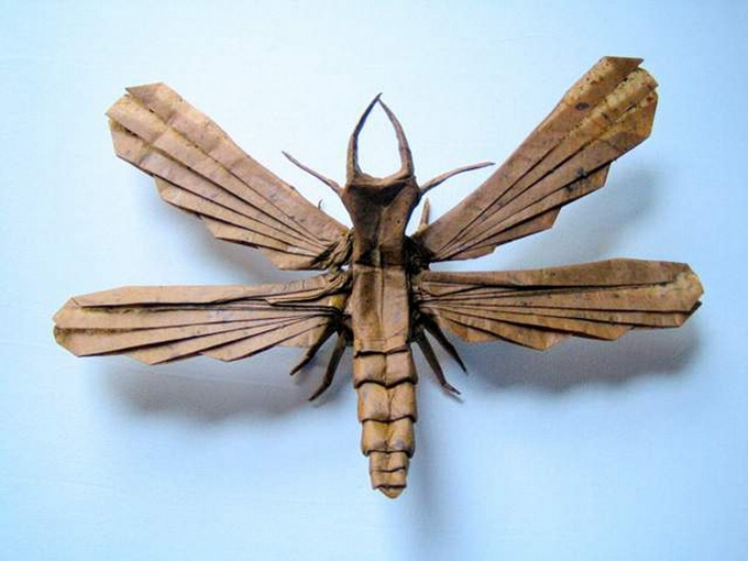 Cool Origami Insects By Brian Chan