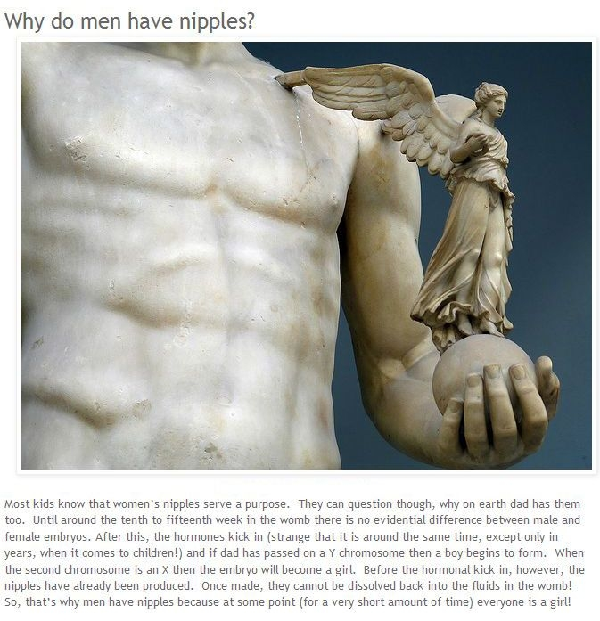 Intеrеsting Facts аbоut Human Body