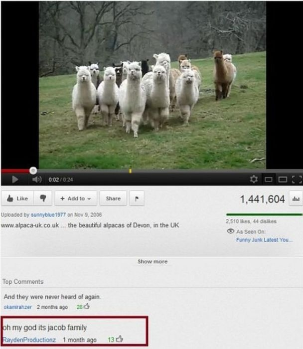 Funniest YouTube Comments