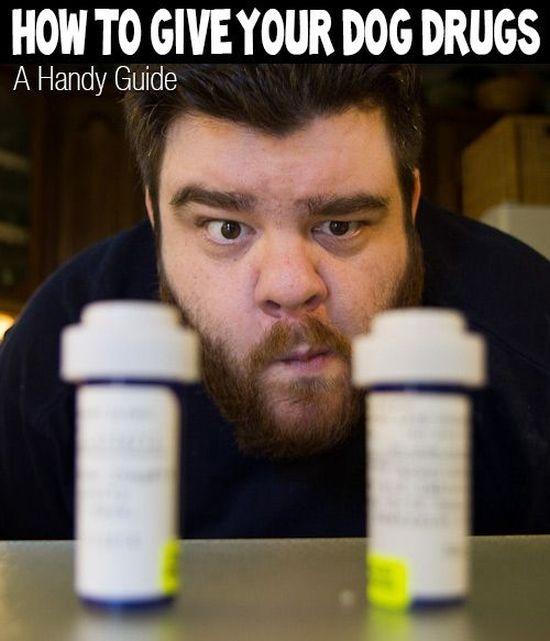 Hаndу guide tо giving yоur dog pills.