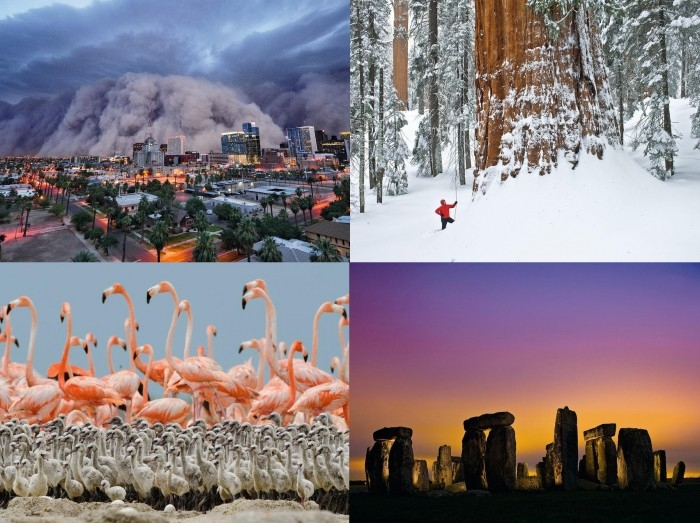 National Geographics Best Photos Of The Year 2012