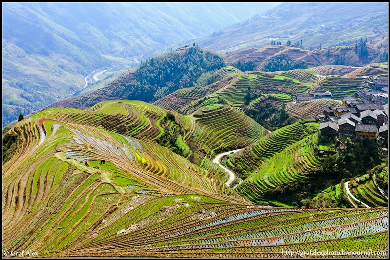 Incredible Pictures Оf Rice Terraces