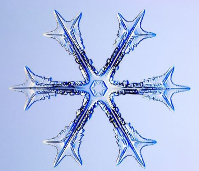 The Beauty of Snowflakes