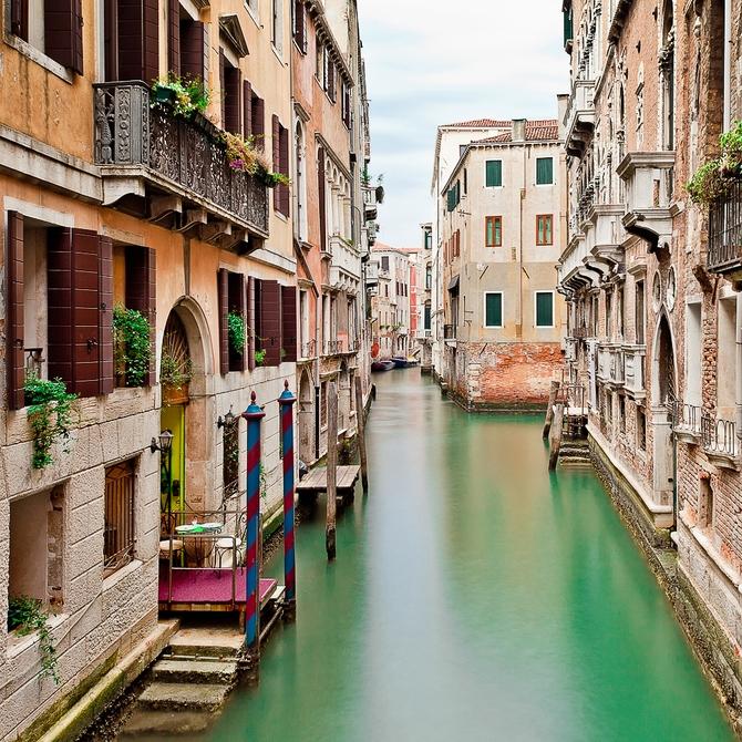 The Beauty Of Venecia
