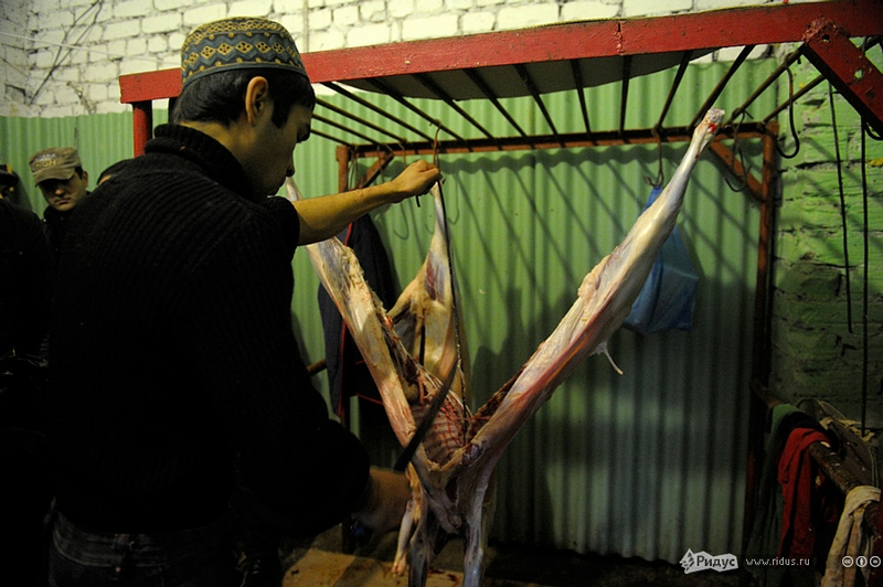 Kurban Bairam 2012, Part II