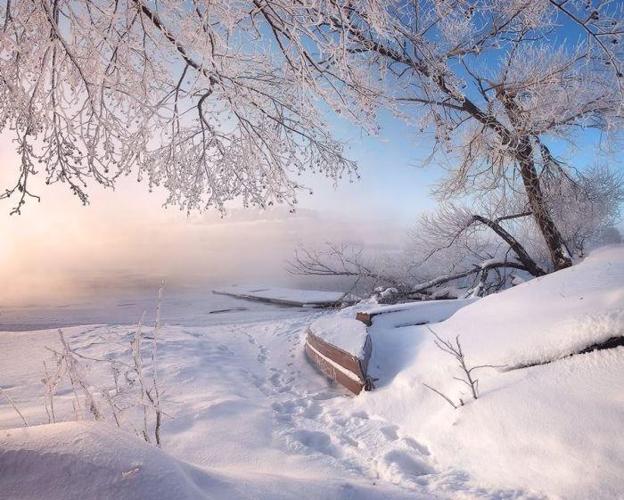 Snowy Winter In Shatura