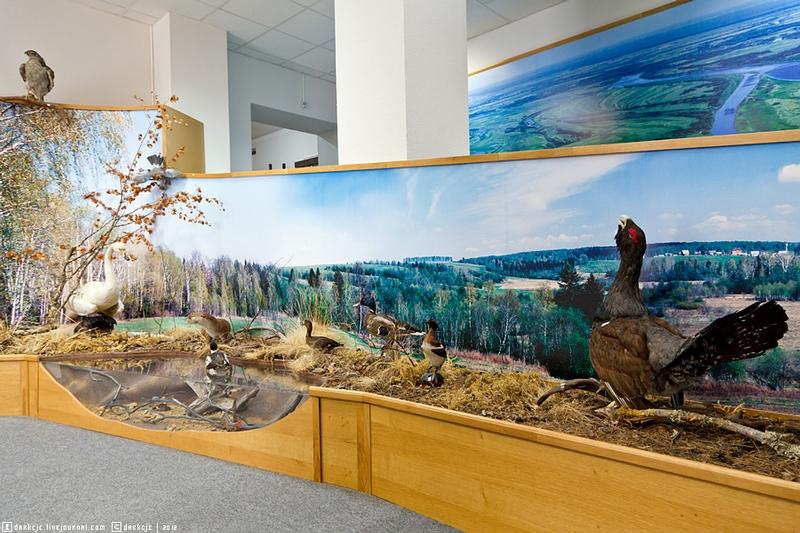 Deep Roots Of Siberia