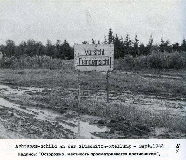 Battle in Volkhovsky Forest (World War II) 10